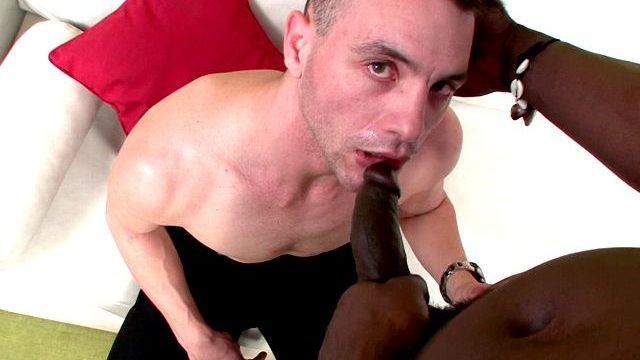 Exhilarated Dark Haired Fag Schnitzel Gobbling Canu's Thick Ebony Stiffy On His Knees