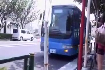 Chinese Bus Plow