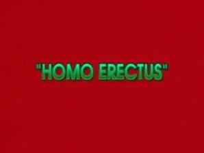 Queer Erectus Proper Flick..